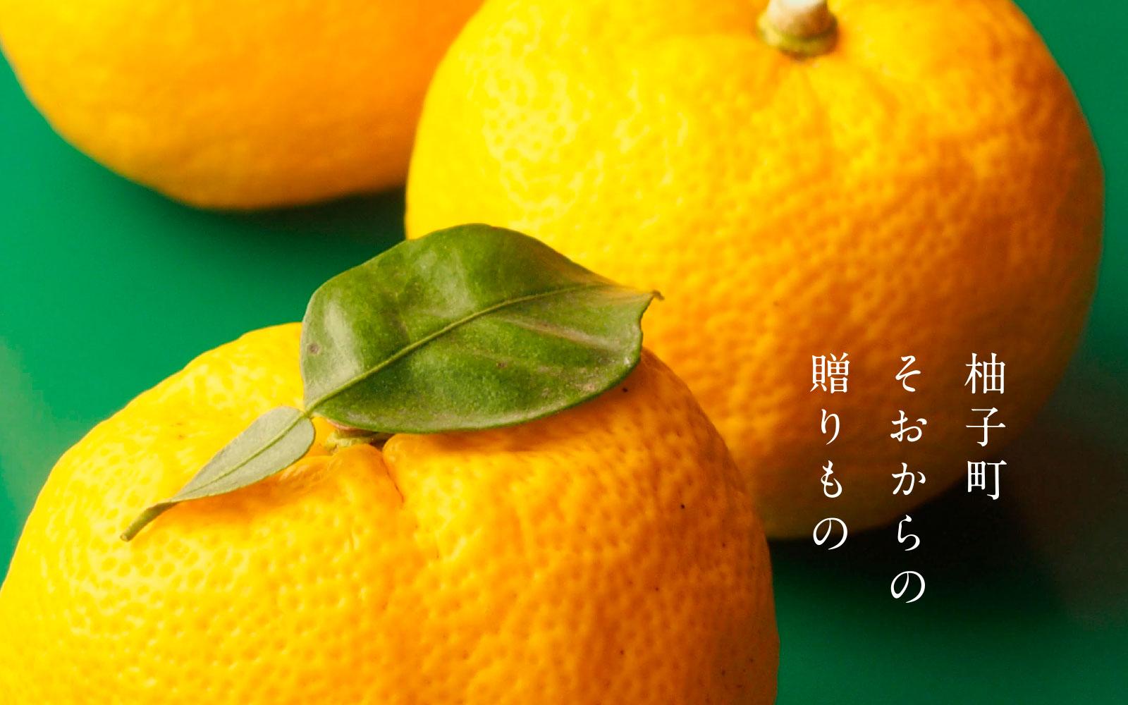 柚子町曽於からの贈り物